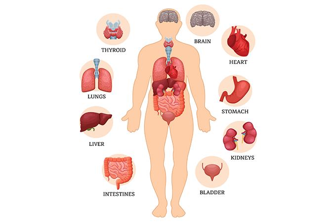 歯周病との関連性